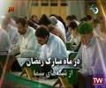 حرم حضرت معصومہ : قم | تلاوت و تفسیر قرآن کریم - جزء پنجم - Farsi & Arabic